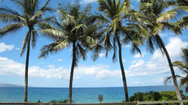 Packing for a First Time Stay at Our Kaanapali Beach Vacation Rentals?