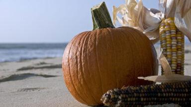 Celebrate Thanksgiving In Hawaii Twice