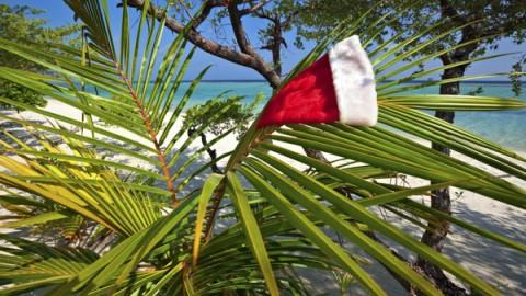 Celebrate December In Maui