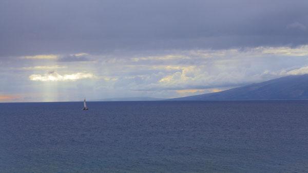 Sail Away To Paradise This Christmas