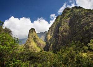 Explore Maui's ʻĪao Valley Gardens