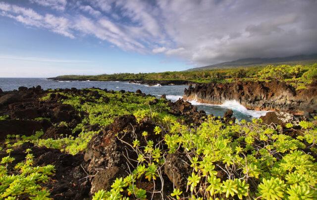 Have You Explored The Maui Lava Tubes?
