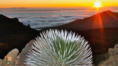 Haleakala – Sunrise